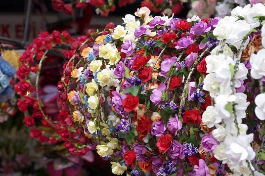 marché aux fleurs Istanbul Turquie