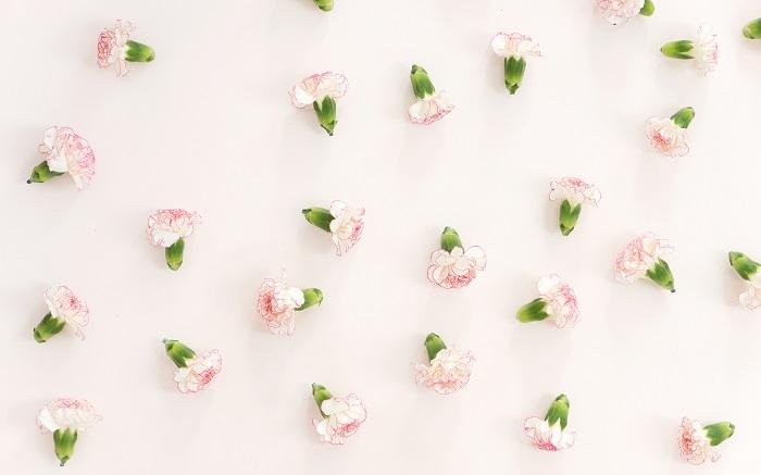 jolis fonds d'écran peinture fleurs